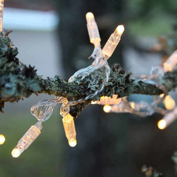 System 24 ljusslinga start 98 ljus 10m varmvit transparent kabel
