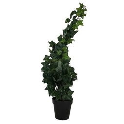Konstväxt murgröna i kruka 60cm