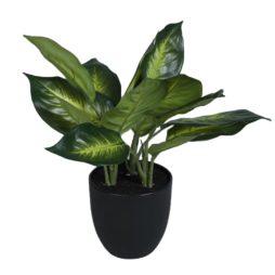 Konstväxt Prickblad i kruka 35cm
